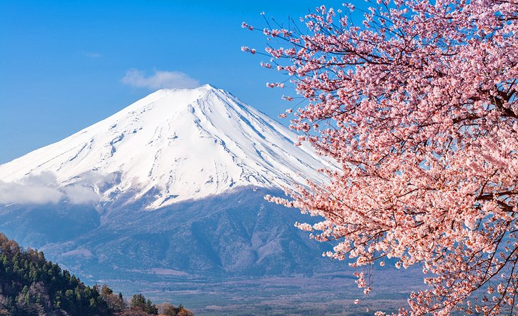 Mount Fuji – Kubota's inspiration